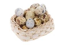 Quail eggs in a basket Royalty Free Stock Photos