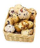 Quail eggs in basket. On white Stock Photography
