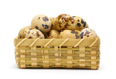 Quail eggs in basket. On white Stock Photo