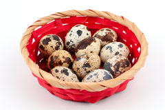 Quail eggs in a basket Stock Photo