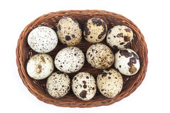 Quail eggs in a basket. On a white background Royalty Free Stock Photo