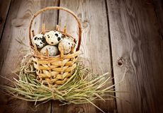 Quail eggs in the basket Royalty Free Stock Photos
