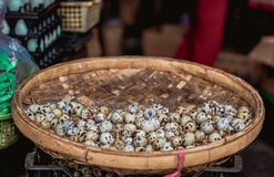 Quail eggs in the basket. Quail eggs in a bamboo basket, which stands on the box. Background blurred stock photography