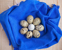 Quail eggs in a basket on a blue napkin. A lot of Royalty Free Stock Photography
