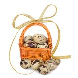 Quail eggs in basket with bow Stock Photography