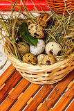 Quail eggs in basket. Dietary. Royalty Free Stock Photo