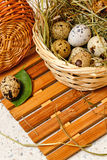 Quail eggs in basket. Easter. Delicacy. Royalty Free Stock Photos