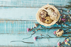 Quail eggs in basket and flowers on blue wood Royalty Free Stock Photography