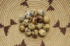 Quail Eggs in a Basket stock photos