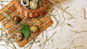 Quail eggs in basket. Healthy food. Stock Images