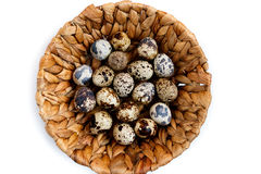 Quail eggs in basket, isolated on white. Background Royalty Free Stock Images
