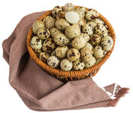 Quail eggs in a basket. A lot of. Isolated on white background Royalty Free Stock Image