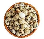 Quail eggs in a basket. A lot of. Isolated on white background Stock Images
