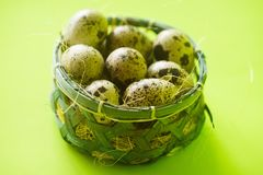 Quail Eggs in Basket Stock Photography
