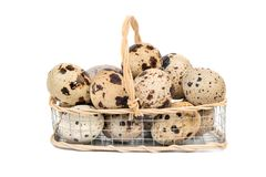 Quail eggs in basket. Raw quail eggs in an iron basket on a white background Royalty Free Stock Images