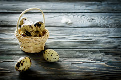 Quail eggs in the basket Royalty Free Stock Images