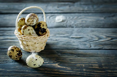 Quail eggs in the basket. On the rough wooden desk with a copy space Royalty Free Stock Photography