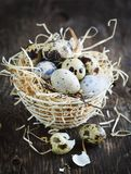 Quail eggs in basket on rustic wooden background. Easter concept Royalty Free Stock Photos