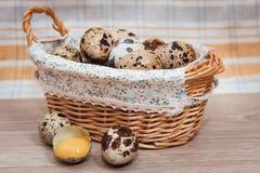 Quail eggs in a basket. Still life of quail eggs in a basket Stock Photos