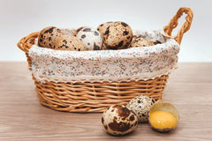 Quail eggs in a basket. Still life of quail eggs in a basket Royalty Free Stock Photos