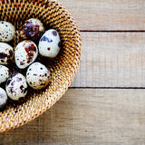 Quail eggs in a basket top view Royalty Free Stock Photos