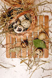 Quail eggs in basket. Weight loss. Royalty Free Stock Photos