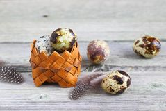 Quail eggs in a basket. Quail eggs in a basket on a wooden background, Easter Stock Photos
