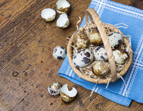 Quail eggs in a basket Stock Photos