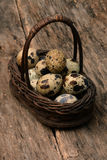 Quail eggs in basket. On wooden table Royalty Free Stock Images