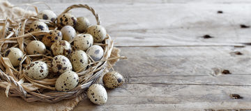 Quail eggs in a basket. On a wooden table royalty free stock images