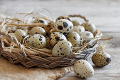 Quail eggs in a basket. On a wooden table Royalty Free Stock Photo