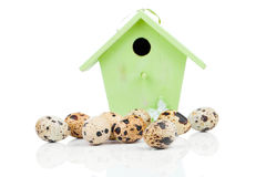 Quail eggs with birdhouse, Stock Photos