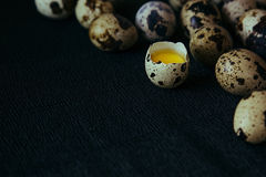 Quail eggs on a black textured background. Raw broken egg with the yolk. Easter card. Side view. Royalty Free Stock Photo