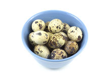 Quail eggs in blue bowl Stock Photo