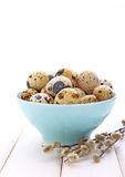 Quail eggs in blue plate Royalty Free Stock Photography