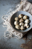 Quail eggs on bowl on blue wooden rustic table Royalty Free Stock Photos