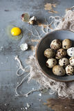 Quail eggs on bowl on blue wooden table with frayed cloth Royalty Free Stock Images