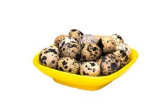 Quail eggs in bowl on white background stock image