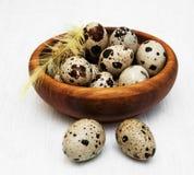 Quail eggs in bowl Stock Photo