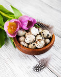 Quail eggs in a bowl Royalty Free Stock Image