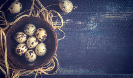 Quail eggs in bowl Stock Image