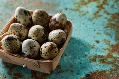 Quail eggs in a box on a blue textured background, top view, selective focus. Spotted quail eggs arranged in rows in a box on a blue textured background, top Royalty Free Stock Photos