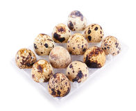 Quail eggs in a box isolated Royalty Free Stock Photography