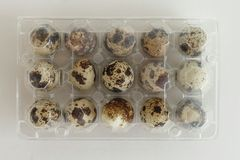 Quail eggs box pack Stock Photos