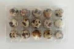 Quail eggs box pack Stock Photos