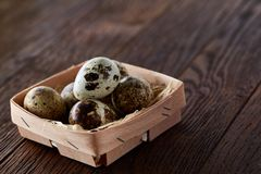 Quail eggs in a box on a rustic wooden background, top view, selective focus. Spotted quail eggs arranged in a box on a rustic wooden background, top view Stock Image