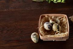 Quail eggs in a box on a rustic wooden background, top view, selective focus. Spotted quail eggs arranged in a box on a rustic wooden background, top view Stock Photography