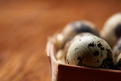 Quail eggs in a box on a rustic wooden background, top view, selective focus. Spotted quail eggs arranged in rows in a box on a rustic wooden background, top Stock Photos