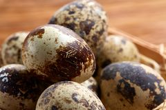 Quail eggs in a box on a rustic wooden background, top view, selective focus. Spotted quail eggs arranged in rows in a box on a rustic wooden background, top Stock Images