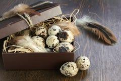 Quail eggs in a box Royalty Free Stock Photos